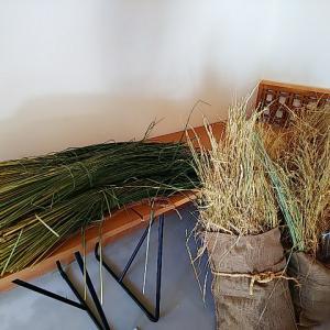 日本の稲藁で作る注連縄ワークショップ♪NPOちんじゅの森ほぐほぐ企画