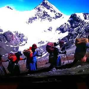 『チョリータ女たちの南米最高峰」アコンカグア挑戦の旅路に寄り添うボリビアの風呂敷アグアヨ
