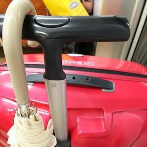 今日は朝からバタバタで予想外の出来事でてんやわんや❗️お仕事はこのスーツケースの中身を使用❗️