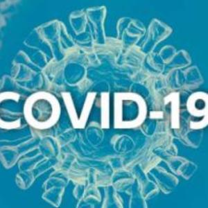 COVID-19: ZOOM会議でこんにちは。そして不安な世の中。。。
