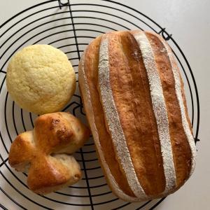 パンって、元気になる!が詰まってるんですよ