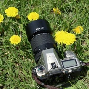 折角買ったのに 〜 HD PENTAX-DA 55-300mm