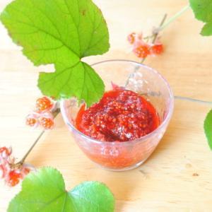 冬いちごのジャム Buerger raspberry jam