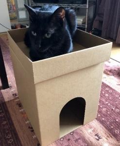 猫ハウス作りました!