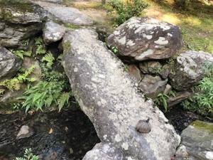 紅葉の依水園