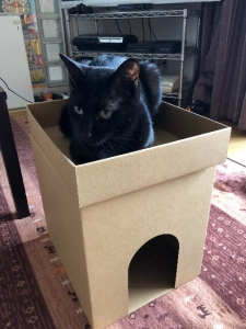 猫ちゃんハウス