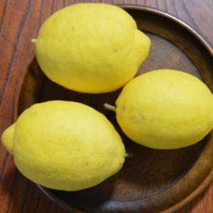 無農薬のレモン!