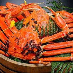 今年も蟹を食べるシーズンがやってきました!