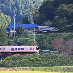<明知鉄道> 居心地がいい