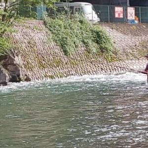 2018 鮎釣りまとめ 「アホか?」 良い釣りで来たよw
