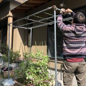 ホームハイポニカの棚作成とビルトイン食洗器