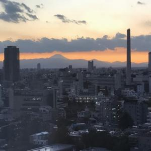 富士山だー!