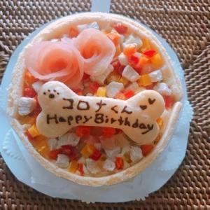 バースデーケーキ~血液検査