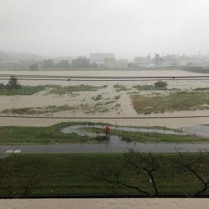 台風の記録