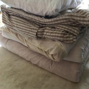 ダニの退治で布団を大型コインランドリーで洗い、わたの打ち直しをする