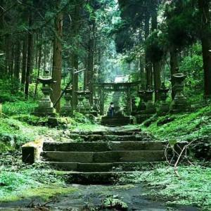 6月に九州に行きます