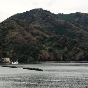 ITJ史上最高の景色(^^) 〜伊豆トレイルジャーニー1