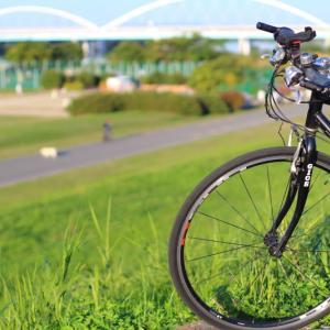 秋晴れの淀川サイクリング