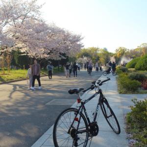 春の大阪城公園2020