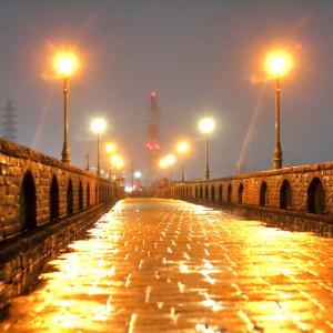 黄金に輝く雨の池島弥生橋