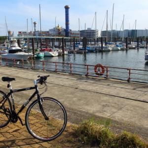 5月の北港ヨットハーバー・常吉臨港緑地2020