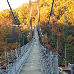 清滝峠を登って星田園地の吊橋「星のブランコ」へ
