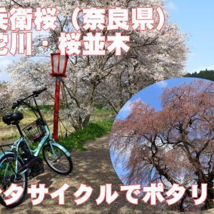 宇陀川・又兵衛桜ポタリングの動画をアップしました