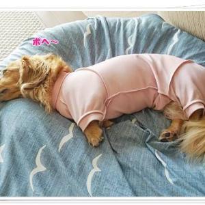 冷え冷えベットでまったりお昼寝は最高なの♪