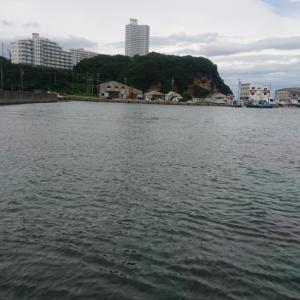 7月15日伊勢湾【タコ釣り2回目】