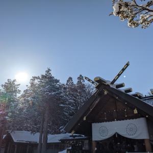 北海道神宮参拝m(__)m