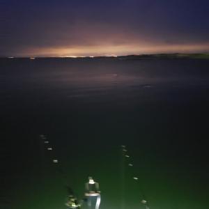 6/18ー19 夜釣り マメイカとニシン