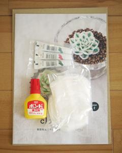 樹脂粘土で作る多肉植物プログラム(3)