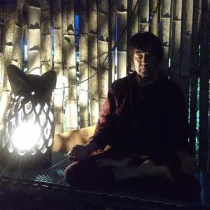 フクロウと瞑想