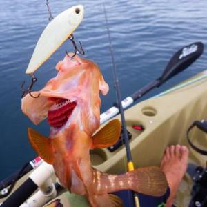 先週の釣り