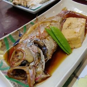 ノドグロの煮つけ@割烹天草(大田市)