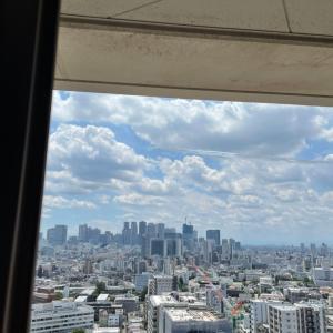 東京2020オリンピック ブルーインパルス展示飛行