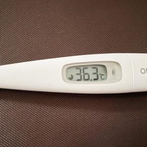 今日は平熱に