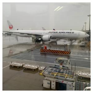 日本到着 コロナ検査へ