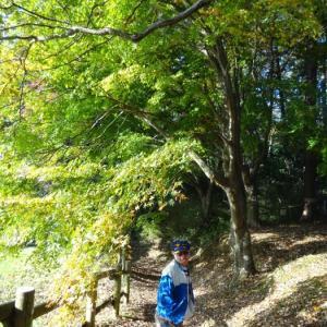 小山田散策