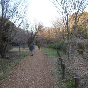 小山内裏公園を散策