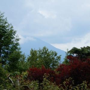 6/18 山中湖オープンガーデン