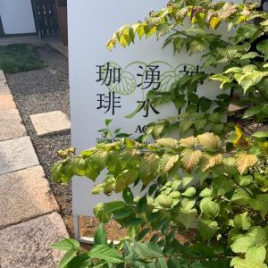 神山湧水珈琲