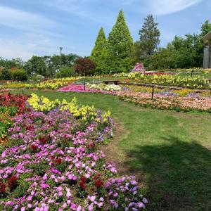 花の文化園へ