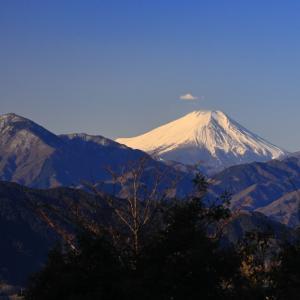高尾山~東京都のオアシス