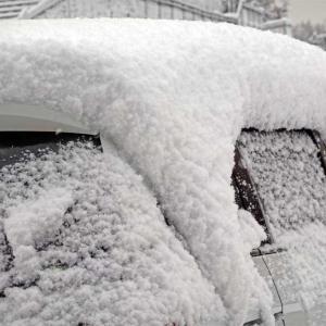 雪のシーズン到来