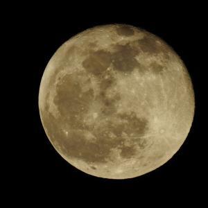 今日は、まぁ満月