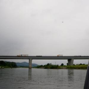 久々の鮎釣りは渡良瀬川