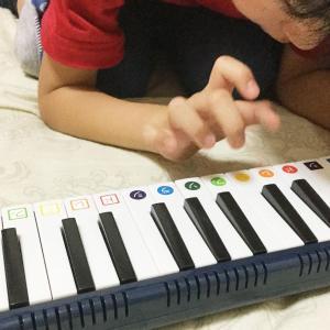 我が家にメロディピアノが来たよ。ピアニカもメロディオンもメロディピアノも、みんな鍵盤ハーモニカなんです。