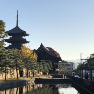 【ハローワールド聖地巡礼】秋の関西弾丸遠征・前編