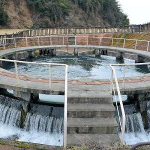富山の円筒分水槽(その3)